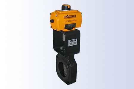 Assured Automation High Performance Butterfly Valve