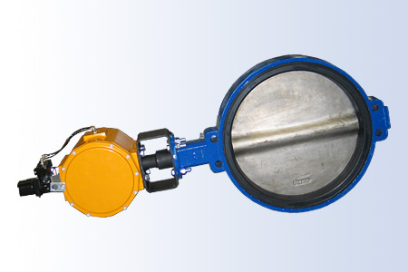 Assured Automation Butterfly Valve with Pneumatic Actuator