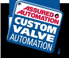 Custom Valve Assemblies
